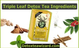 Triple Leaf Detox Tea Ingredients? Benefits & Uses of Those Ingredients